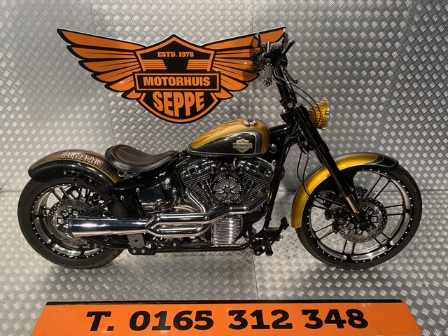 Harley-Davidson Anonymous Softail